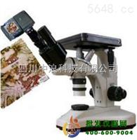 数码双目金相显微镜4XB-ⅡD