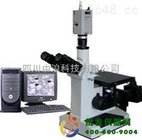 三目電腦金相顯微鏡4XC-V