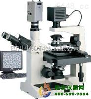 电脑倒置显微镜XTU-30C