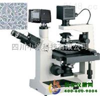 数码倒置显微镜XTU-30D